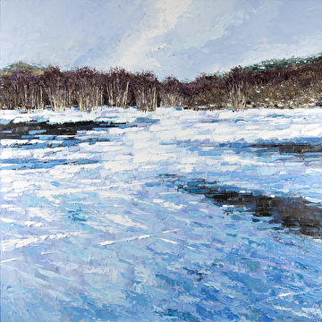 Bevroren duinpoel aan de Woudweg