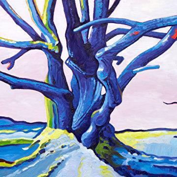 Winter, de blauwe boom
