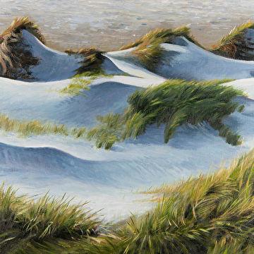 Ritme in de duinen 2