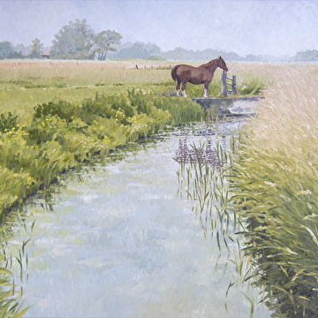 Paard aan De Voert